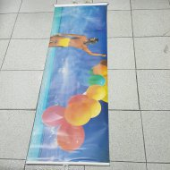 Auto Sun Shade Roller Balloon Design